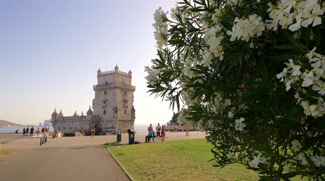 Torre de Belém mostrando um jardim, arquitetura de patrimônio e paisagens litorâneas