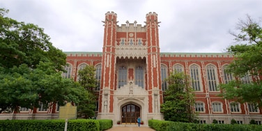 Bizzell Library showing a park and heritage architecture
