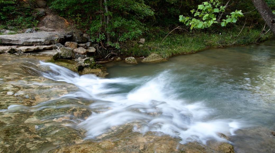 치카소 국립휴양지 을 보여주는 강 또는 시내