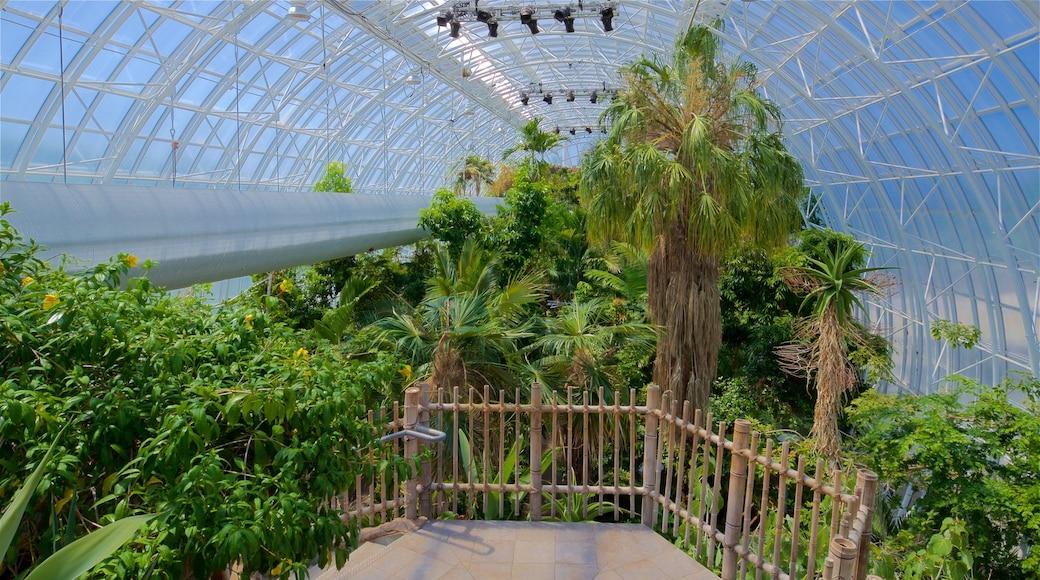 Myriad Botanical Gardens which includes interior views and a park