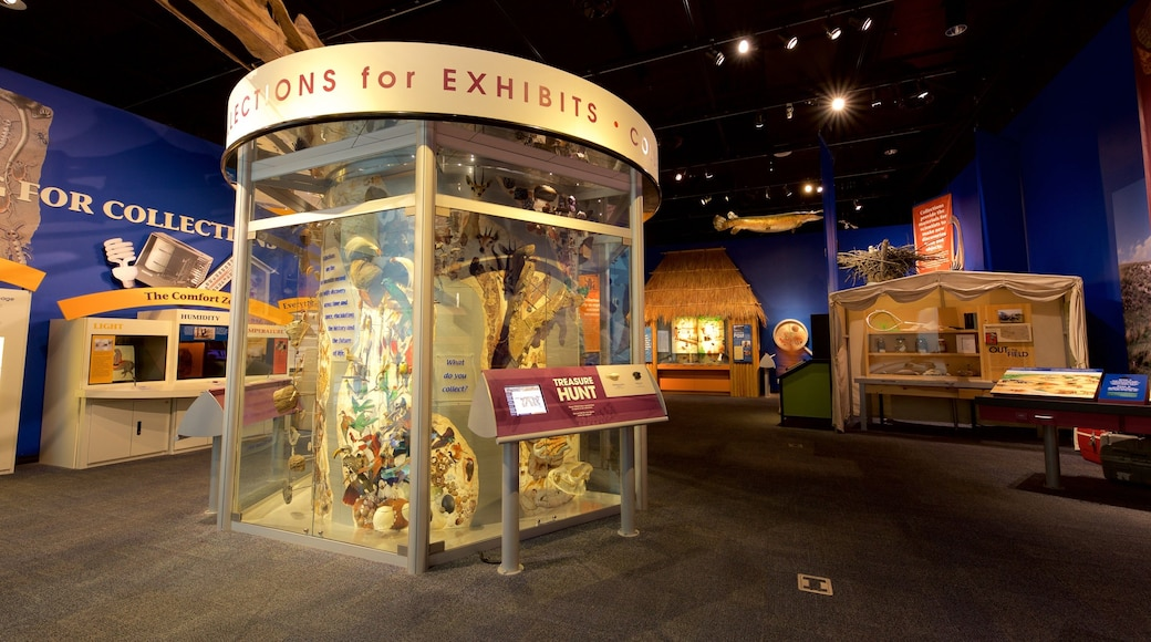 Sam Noble Oklahoma Museum of Natural History showing interior views