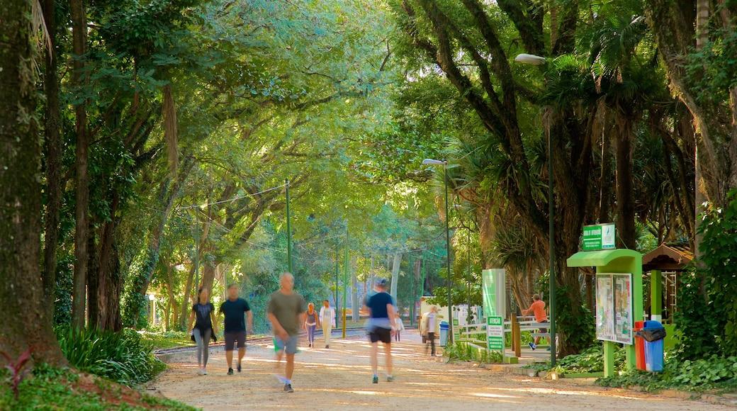 Parque Portugal caracterizando um parque e escalada ou caminhada assim como um pequeno grupo de pessoas