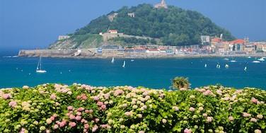 Palacio de Miramar mostrando una localidad costera, vistas de una costa y flores