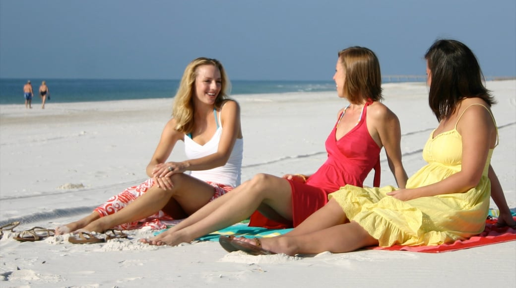 Orange Beach which includes tropical scenes and a sandy beach as well as a small group of people