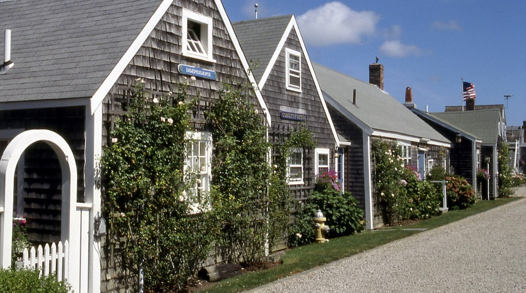 Nantucket showing a house and a small town or village