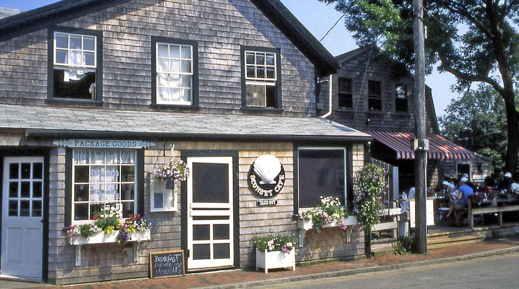 Nantucket mostrando una pequeña ciudad o aldea y una casa