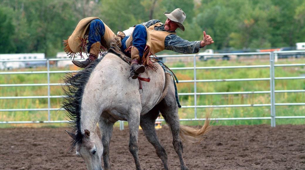 Boise featuring ratsastus ja esittävä taide sekä yksi mies