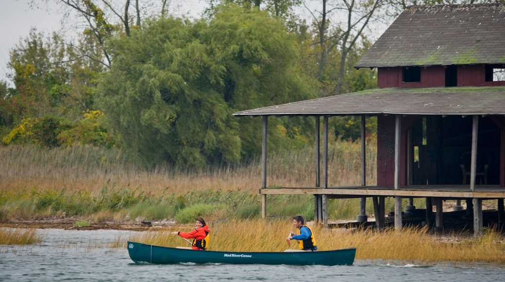 New Haven which includes a river or creek and kayaking or canoeing as well as a couple