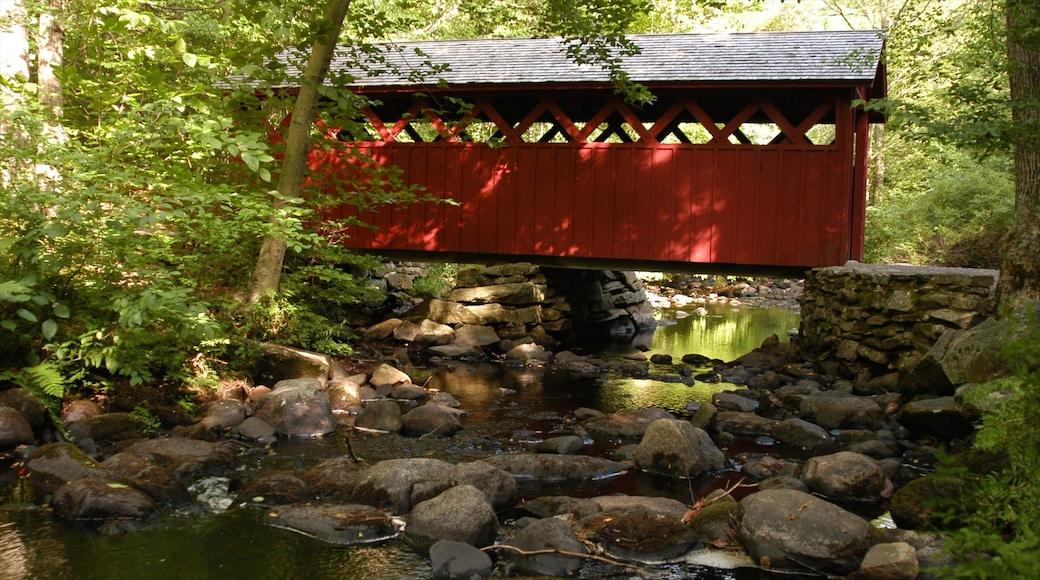 New Haven showing a park, landscape views and a bridge