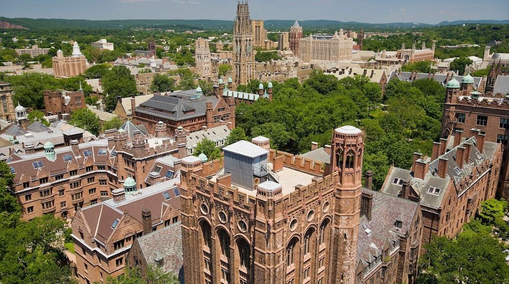 뉴 헤이븐 이 포함 문화유산 건축 과 도시