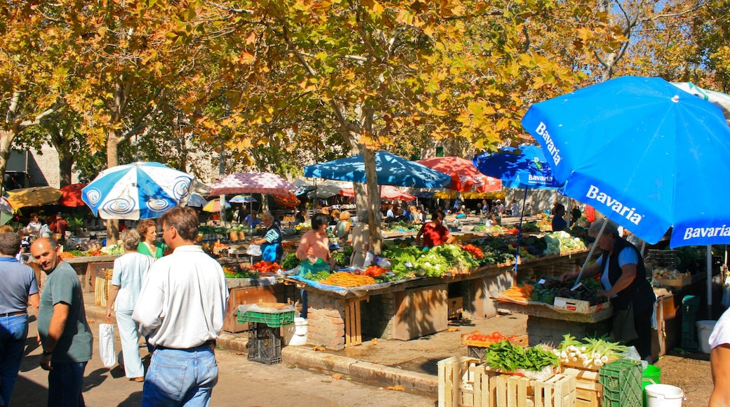 Split which includes food, autumn leaves and markets