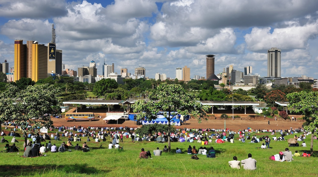 Nairobi featuring picnicing, a city and a skyscraper