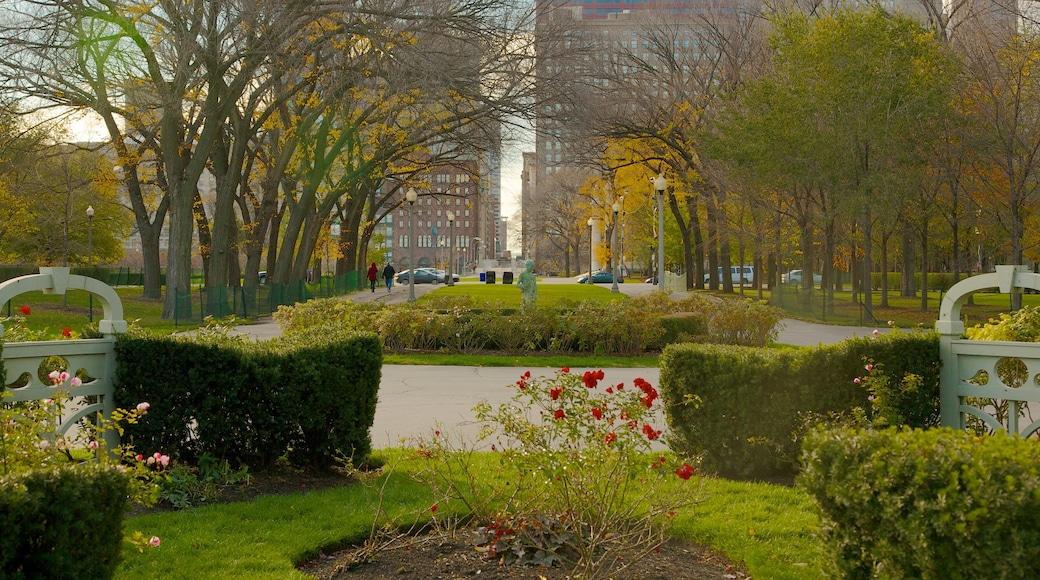 Millennium Park which includes a park, a city and flowers