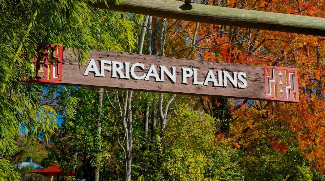 Zoo Atlanta featuring signage, autumn colours and landscape views