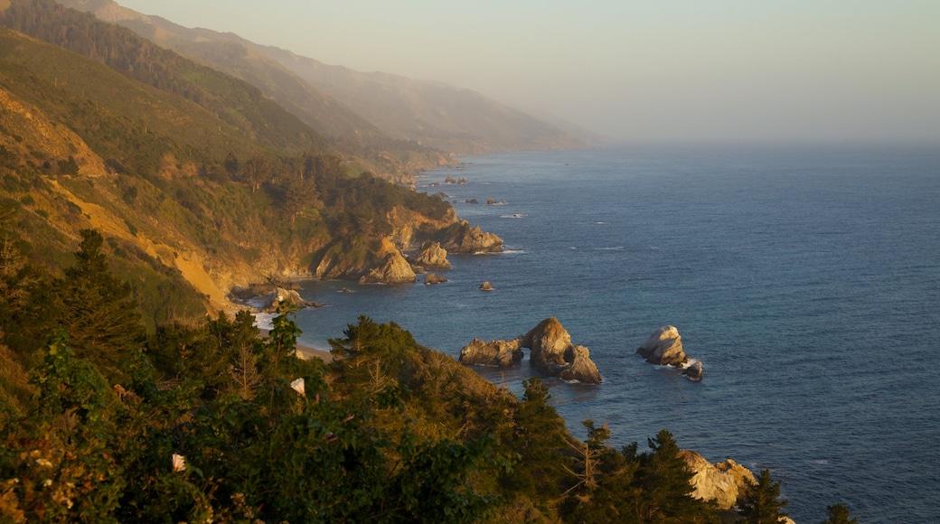 Pfeiffer Big Sur State Park mit einem Landschaften und schroffe Küste