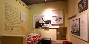 National Steinbeck Center showing interior views