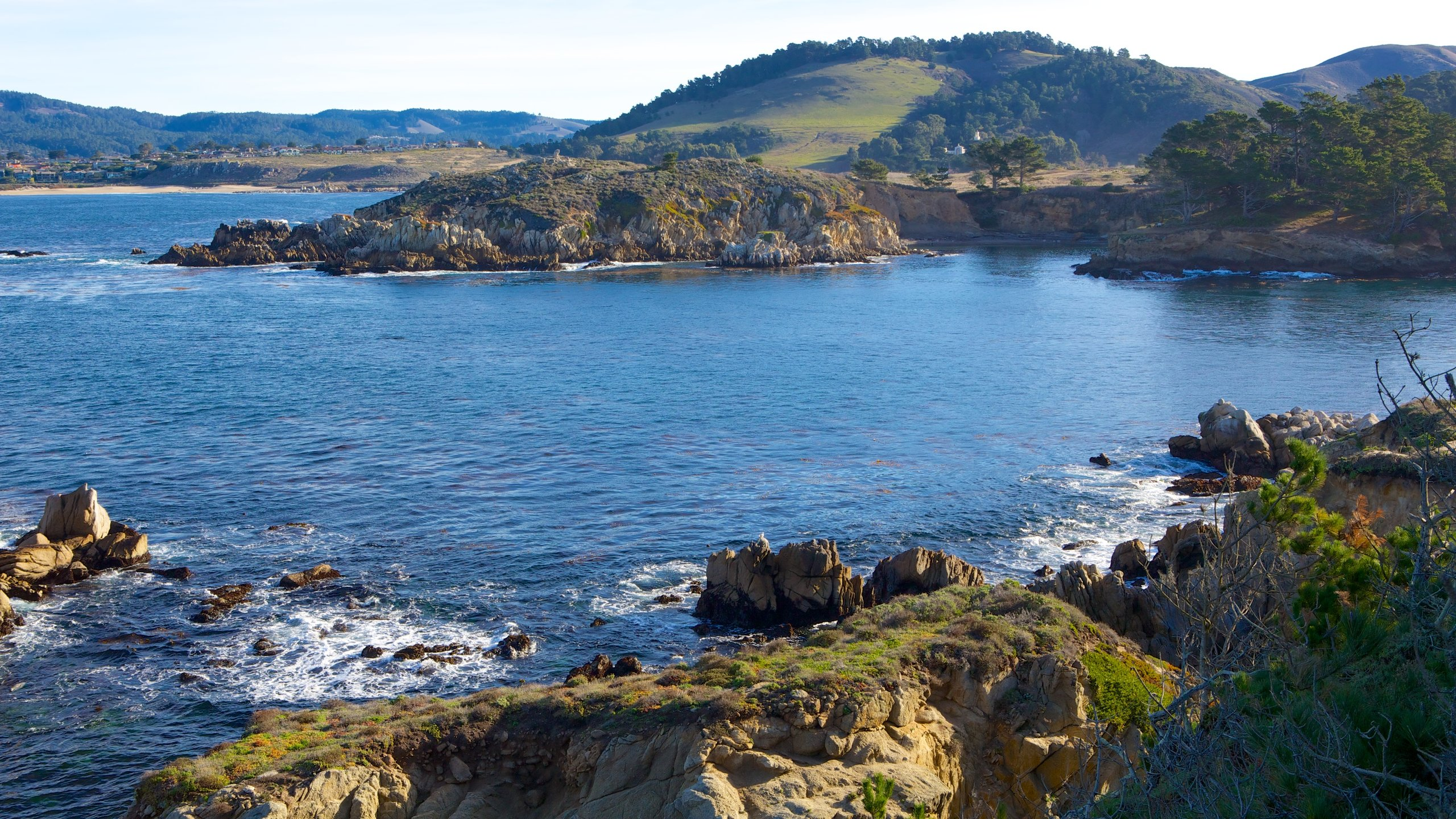Point Lobos State Natural Reserve, Carmel, California, United States of America