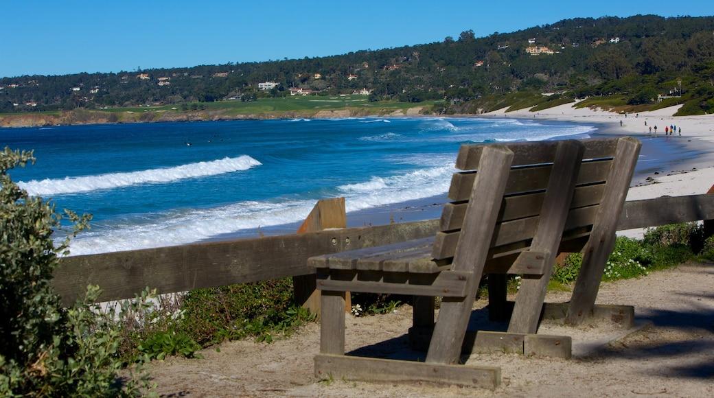 Carmel Beach caracterizando uma praia, paisagem e paisagens litorâneas