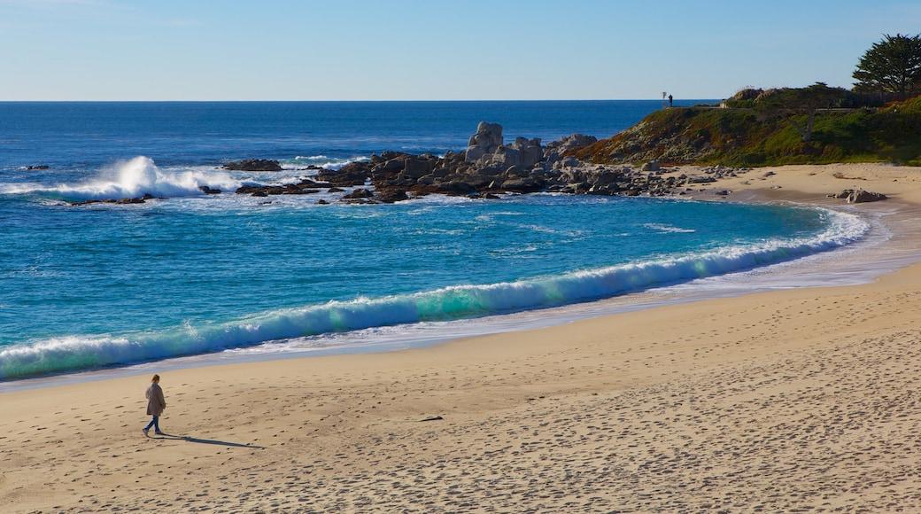 Carmel Beach caracterizando paisagem e uma praia de areia assim como uma mulher sozinha