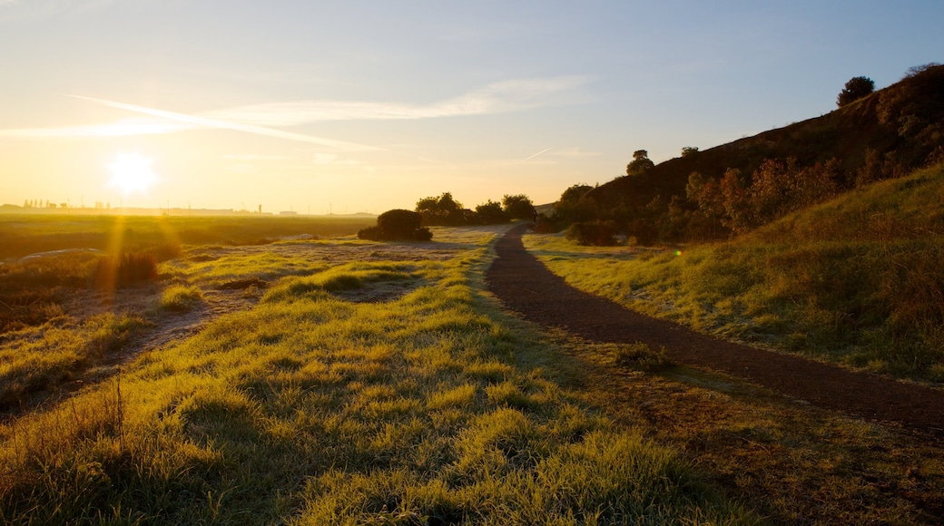 Don Edwards San Francisco Bay National Wildlife Refuge which includes landscape views, a beach and a sunset