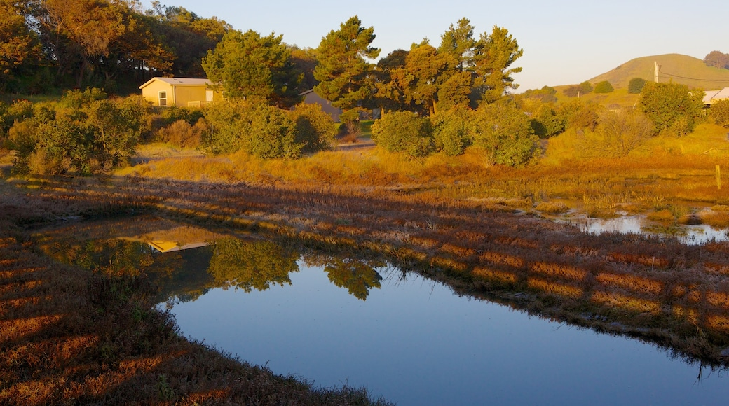 Don Edwards San Francisco Bay National Wildlife Refuge which includes landscape views, a park and a river or creek