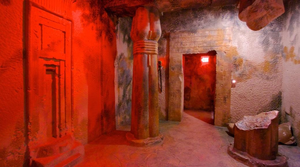 埃及煉金博物館 其中包括 內部景觀