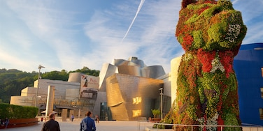 Guggenheim Museum Bilbao which includes modern architecture, outdoor art and a sunset