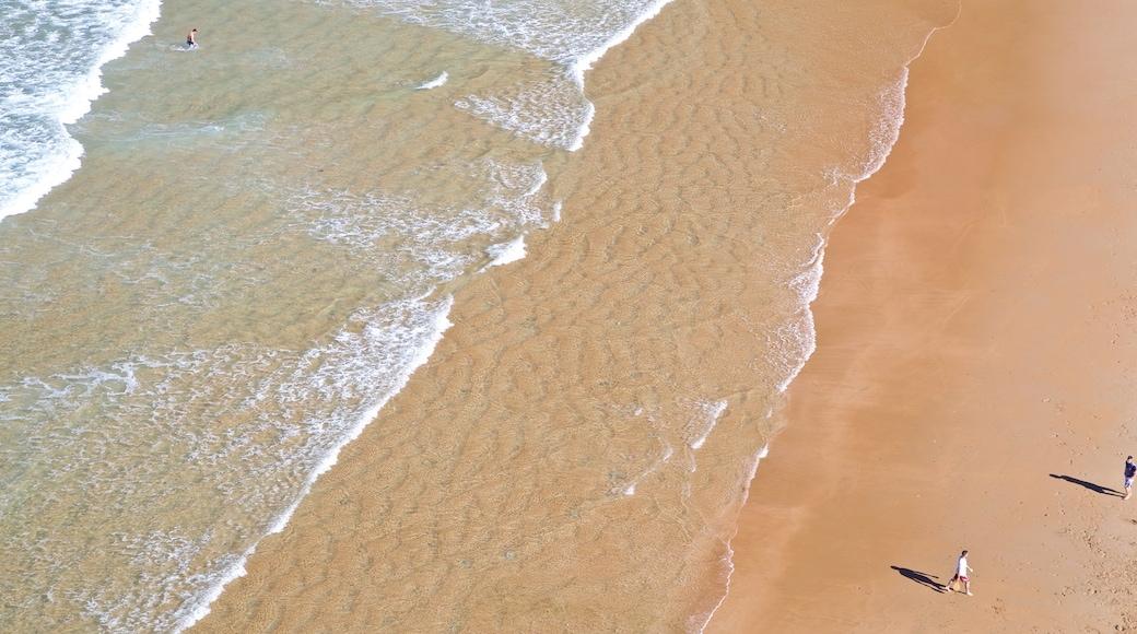 Santander featuring a sandy beach and general coastal views