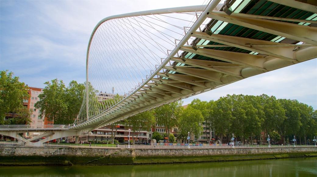Zubizuri-Brücke welches beinhaltet Fluss oder Bach und Brücke