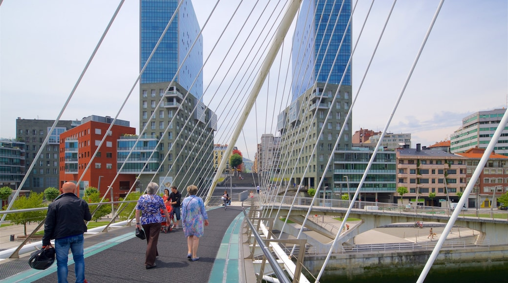 Zubizuri-Brücke welches beinhaltet Straßenszenen, Fluss oder Bach und Brücke