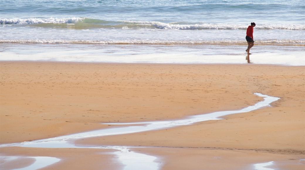 Playa del Camello ofreciendo una playa y vistas de una costa y también una mujer