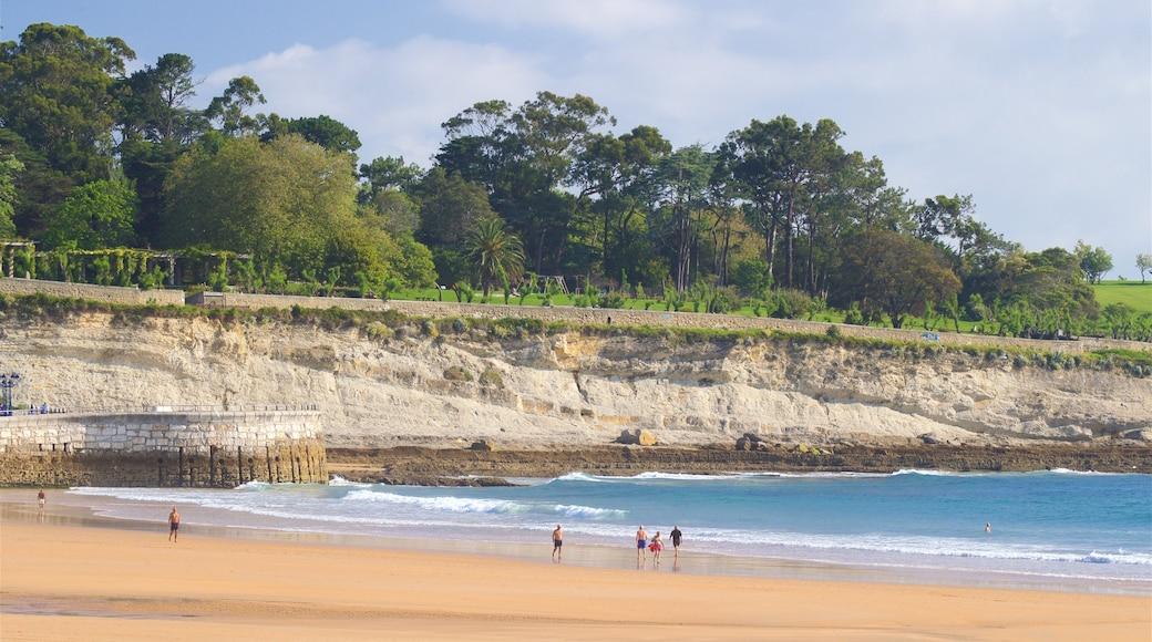 Playa del Camello mostrando litoral accidentado, una playa de arena y vistas de una costa