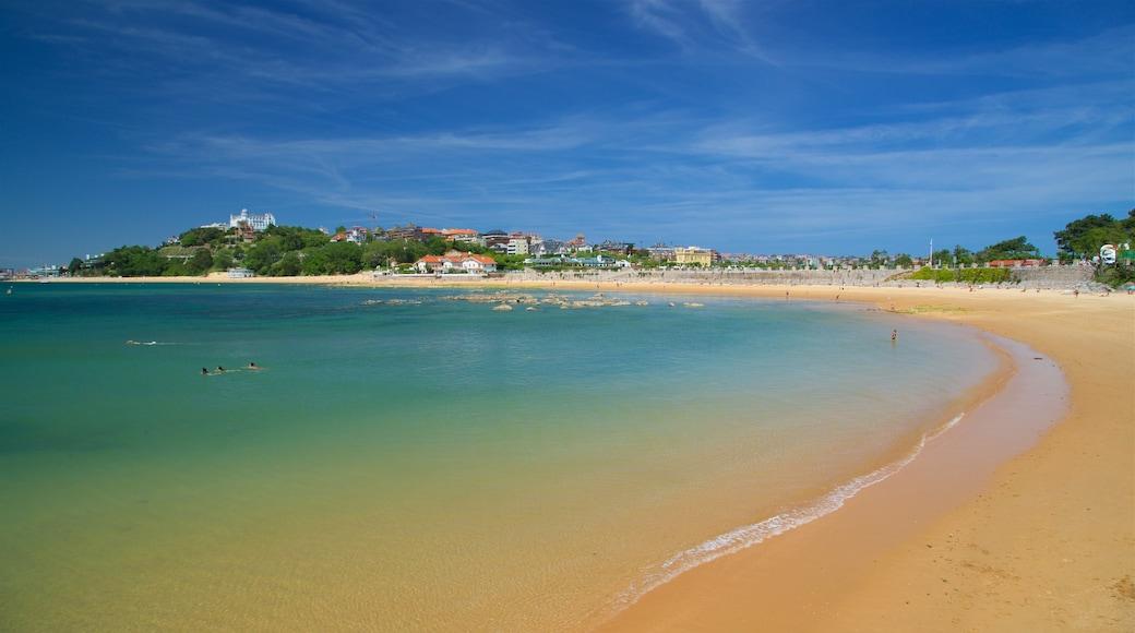 Magdalena Beach showing a coastal town, a beach and general coastal views