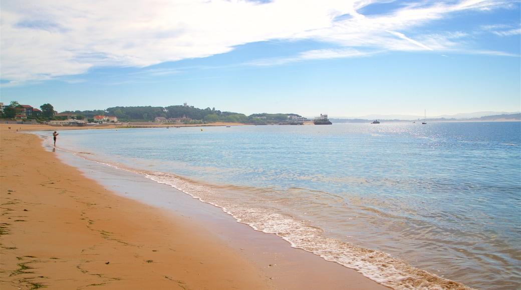 Magdalena Beach featuring a sandy beach and general coastal views