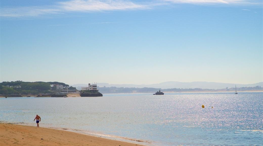 Magdalena Beach featuring general coastal views and a sandy beach