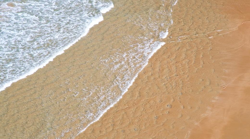 Matalenas Beach showing general coastal views and a sandy beach