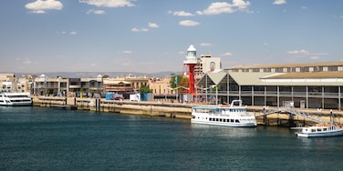 Port Adelaide showing a bay or harbour