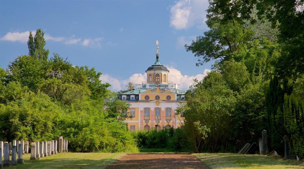 Belvederen linna featuring puutarha ja vanha arkkitehtuuri