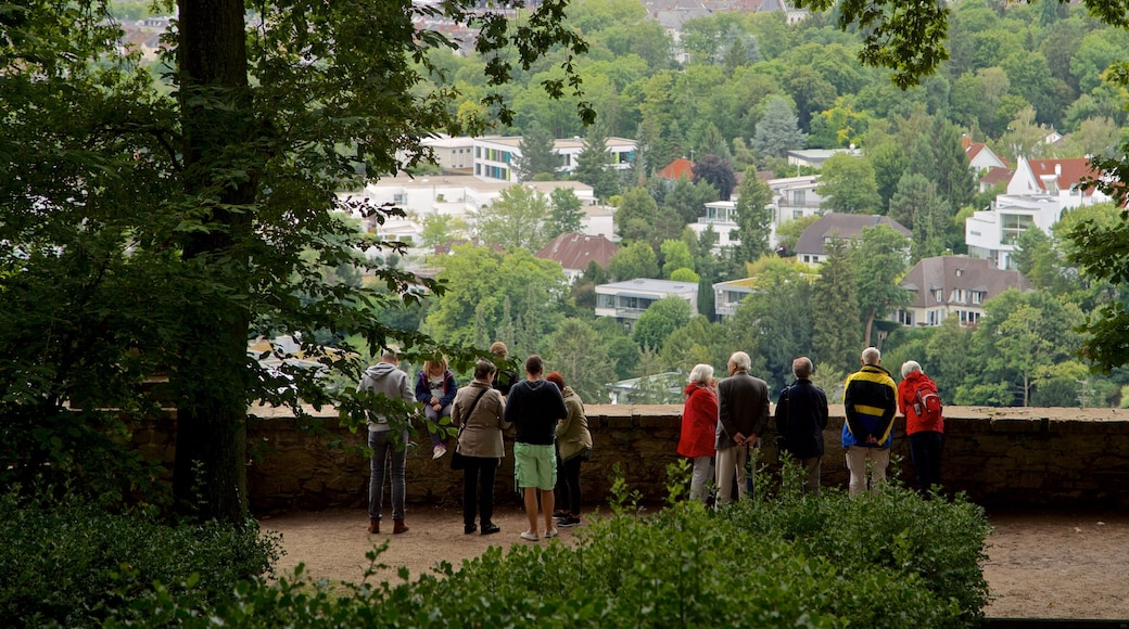 Neroberg showing a small town or village and views as well as a small group of people