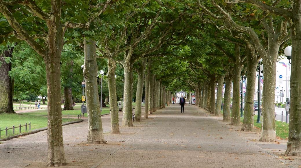 Eltville am Rhein toont een park