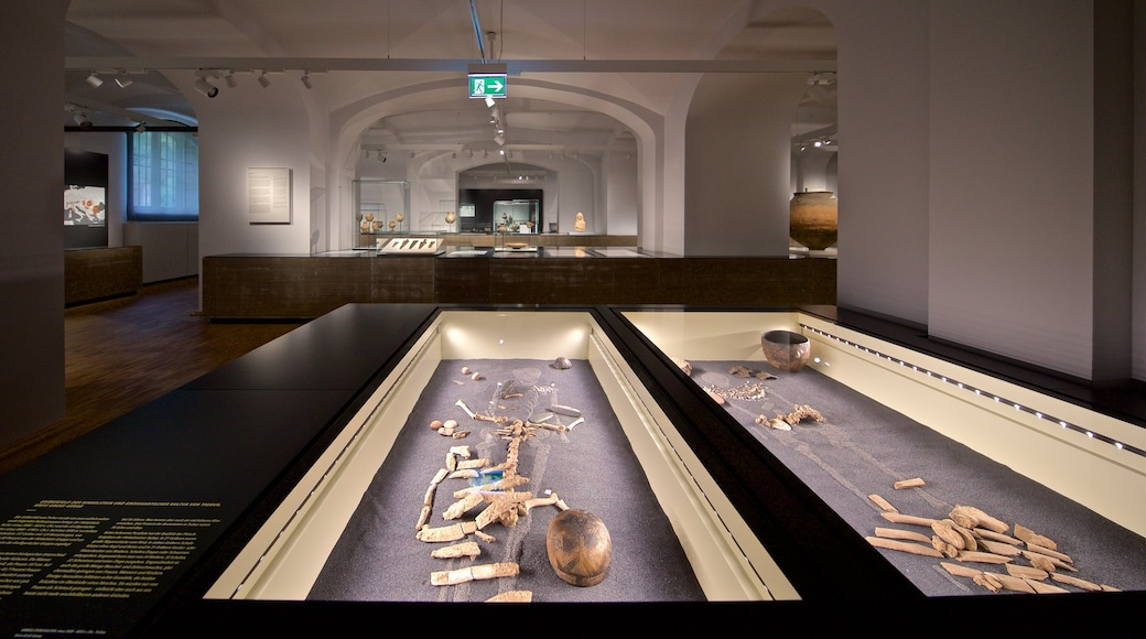 Hessisches Landesmuseum featuring interior views and heritage elements