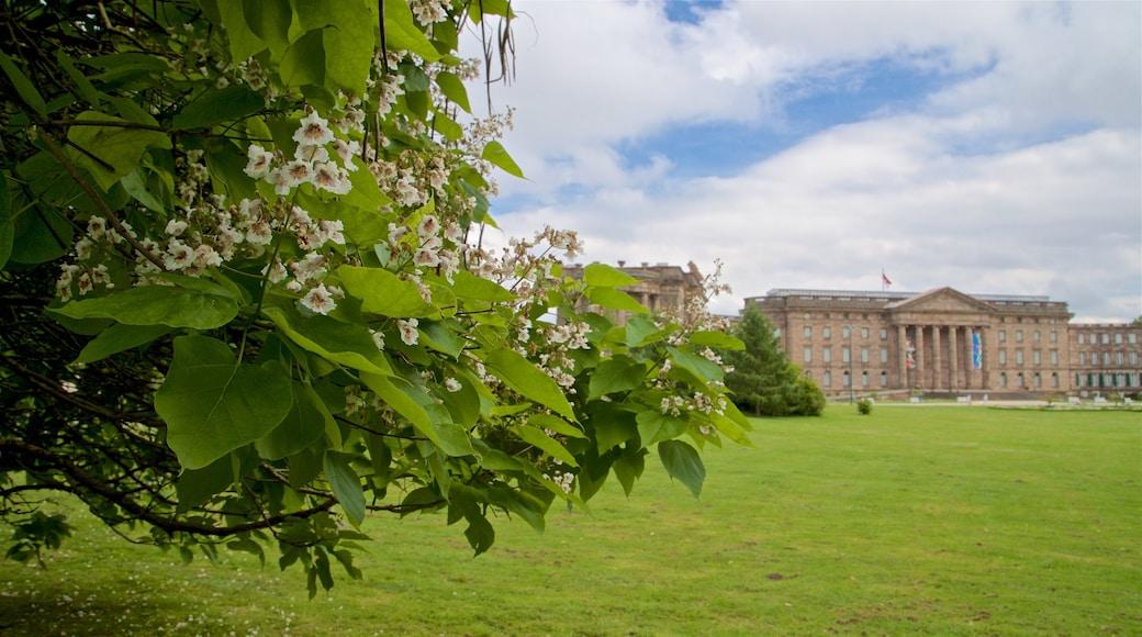 Schloss Wilhelmshöhe das einen Park, historische Architektur und Wildblumen