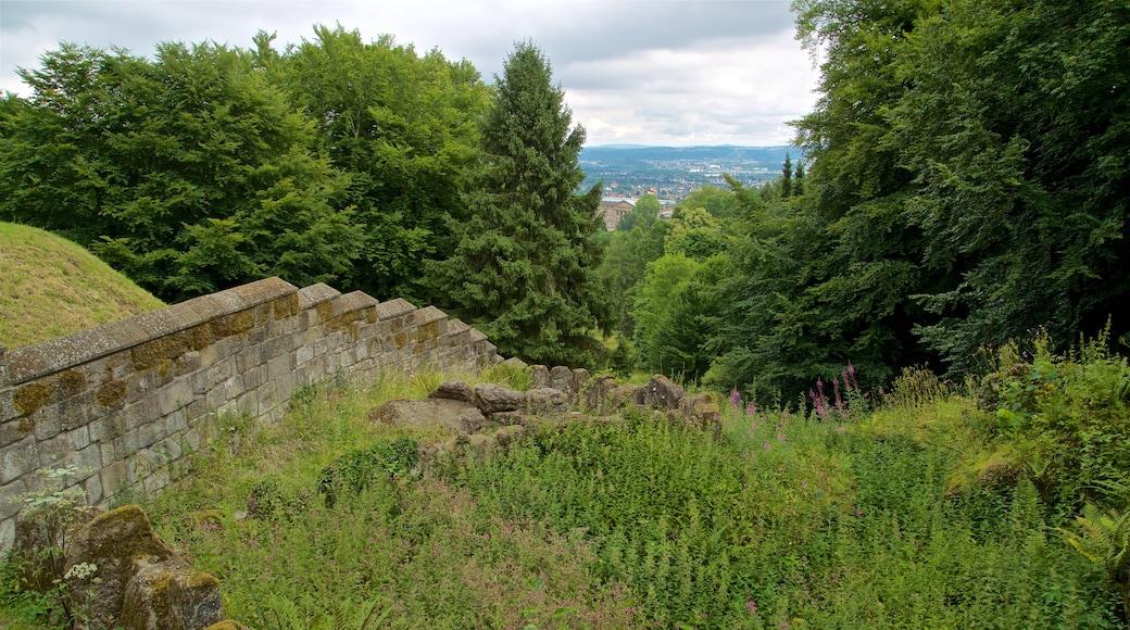 Schloss Löwenburg welches beinhaltet ruhige Szenerie