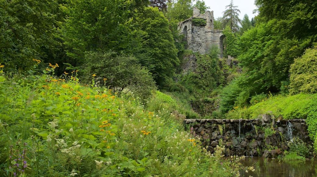Bergpark Wilhelmshoehe das einen Wildblumen und Fluss oder Bach
