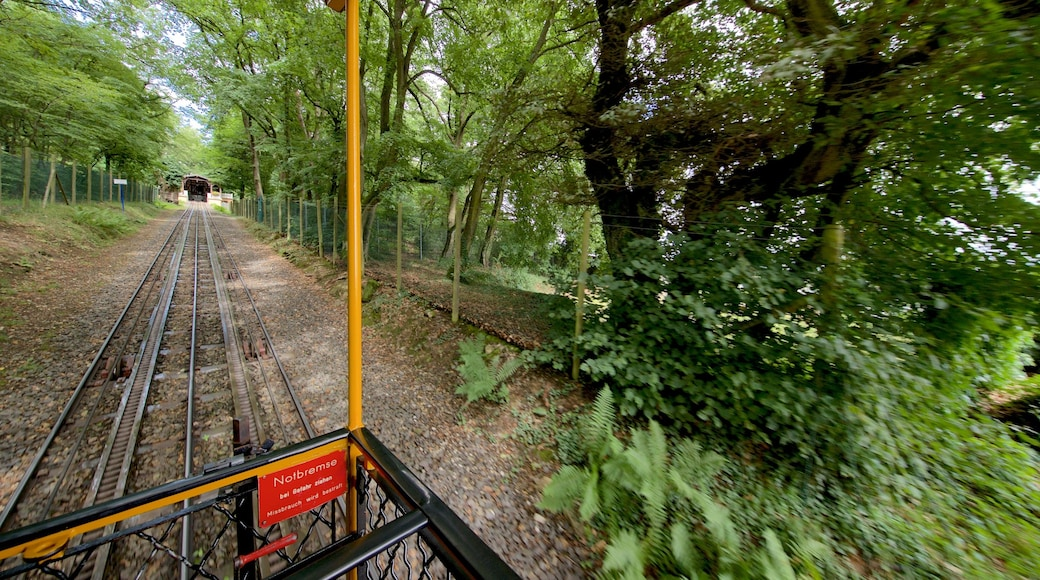 Nerobergbahn das einen Eisenbahnbetrieb