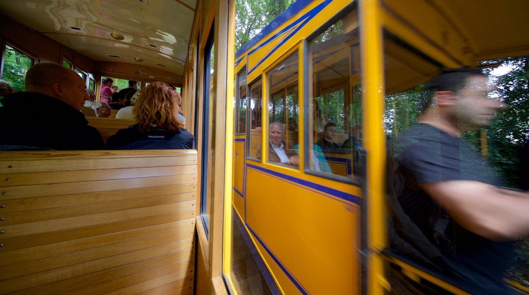 Nerobergbahn welches beinhaltet Eisenbahnbetrieb sowie kleine Menschengruppe