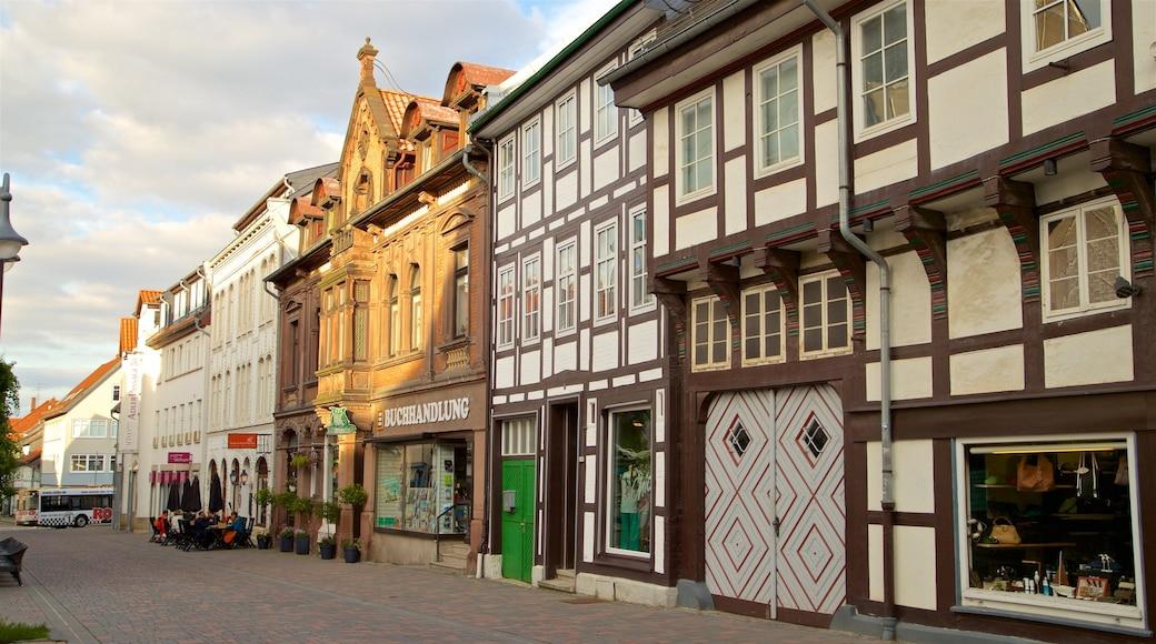 Goslaer Altstadt mit einem Geschichtliches