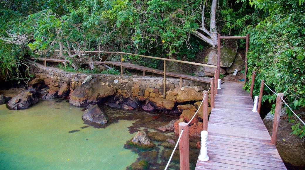 Praia da Crena welches beinhaltet Fluss oder Bach und Brücke