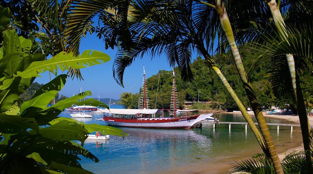 Strand von Bonfim welches beinhaltet Bucht oder Hafen und Sandstrand