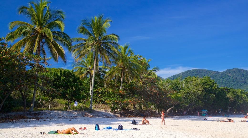 Strand von Lopes Mendes das einen tropische Szenerien, allgemeine Küstenansicht und Sandstrand